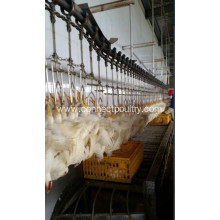 Top for Chicken Plucker Overhead Conveyor Line of bird processing line export to New Caledonia Manufacturer