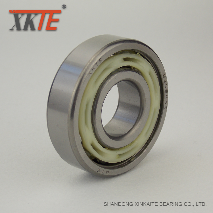Nylon Retainer Conveyor Roller Bearing 6305 KA/TN9