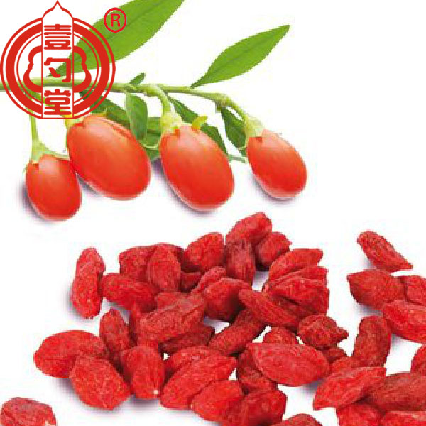 Goji Berries Red Dried Fruits
