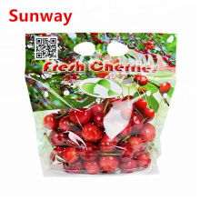 Good Quality for China Fruit Bag,Fruit Protection Bags,Fruit Plastic Bags Manufacturer and Supplier Custom Printed Fruit Bag export to Italy Supplier