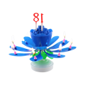 Promotional Number Chrysanthemum  Birthday Cake Candle