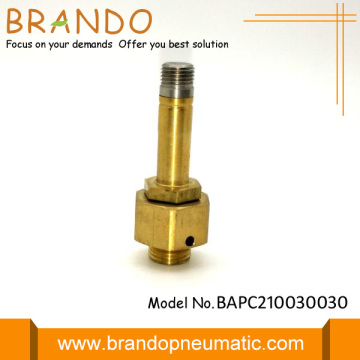 Copper Yellow Solenoid Valve Armature