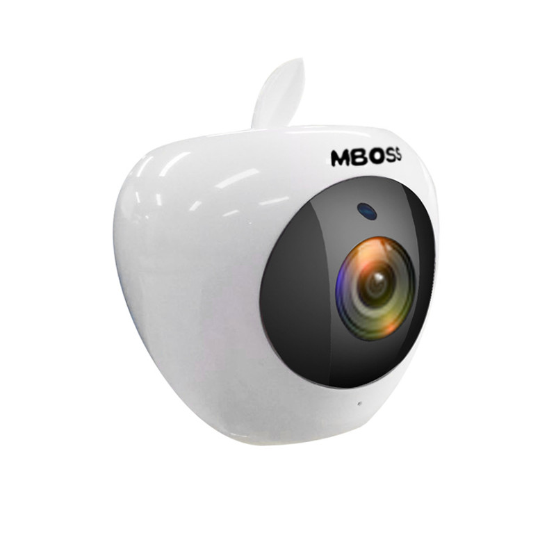 2mp fish eye cctv camera