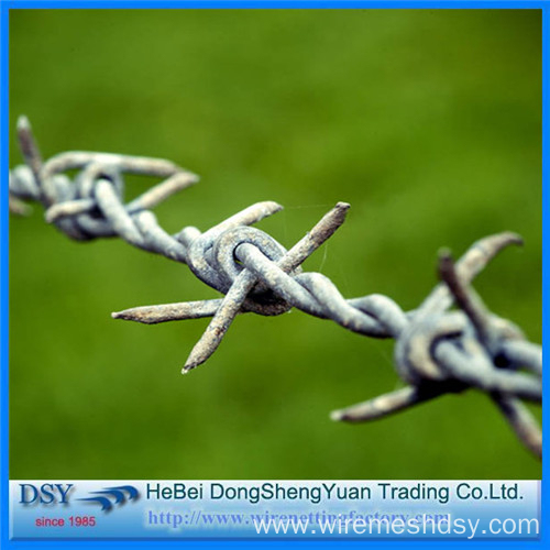 Double Twist Galvanized Barbed Wire