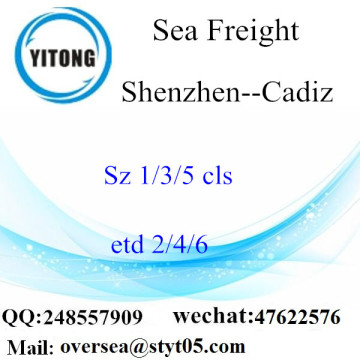 Shenzhen Port LCL Consolidation To Cadiz