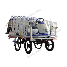 Rice Planter Transplanting Seedlings Rice Transplanter