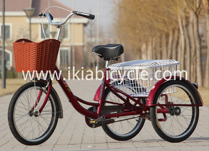 IKIA Tricycle (1)
