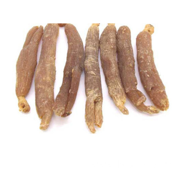 korean red ginseng price