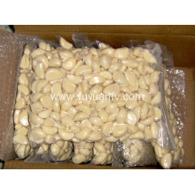 China for Garlic Peeled Peeled garlic cloves price shelf life supply to Angola Exporter
