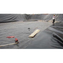 60mils HDPE Impermeable Geomembrane for Water Conservancy