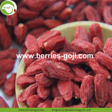 Factory Wholesale Top Quality Pack Wolfberry