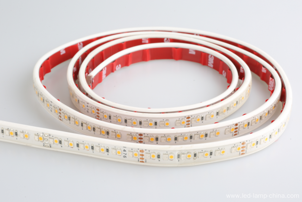 SMD 3528 192 leds/M RGBW IP20 IP65 strip