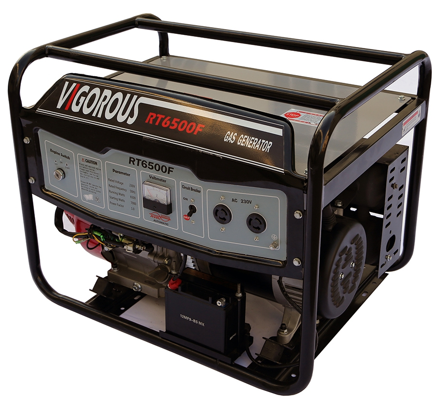 2000W Portable Gas-Powered Generator
