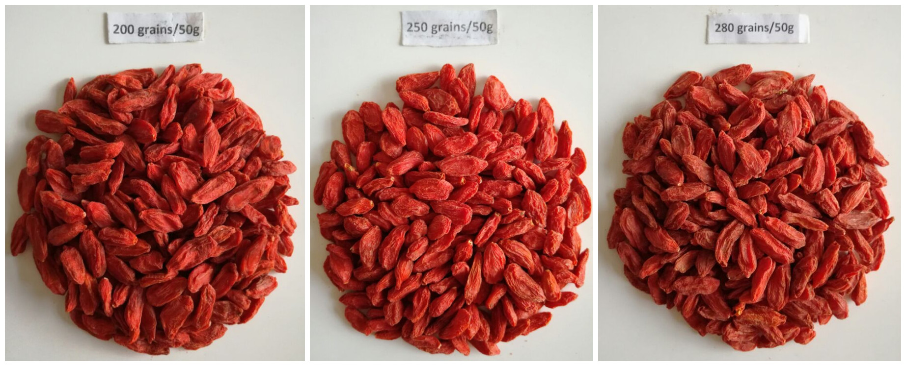 within 300 Grains Goji berries wolfberry