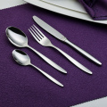 18/0 New Style Style Stainless Steel Cutlery
