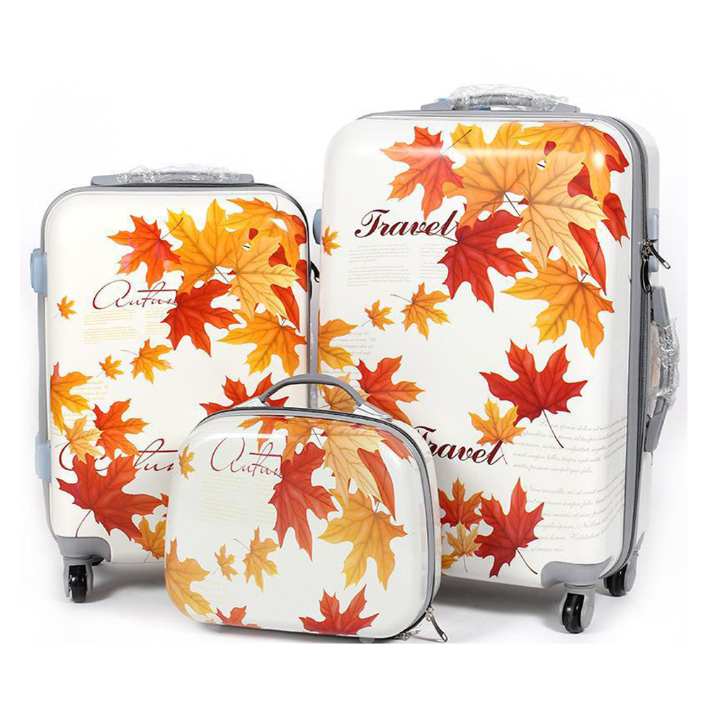 PC luggage set
