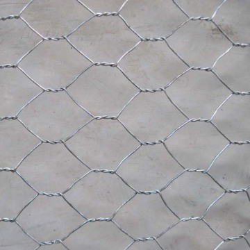 High Quality Galvanized Low Price Chicken Mesh