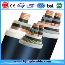 0.6/1KV XLPE insulate PVC sheath fire-resistance Power Cable