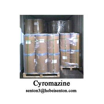 Personlized Products for Antiparasitic Drugs Agricultural Pesticides Cyromazine Insecticide export to United States Suppliers