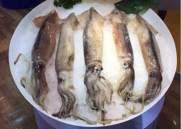 Whole Round Argentine Squid