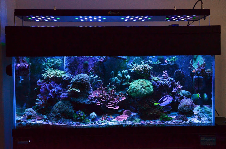LED Marine Aquarium Lights