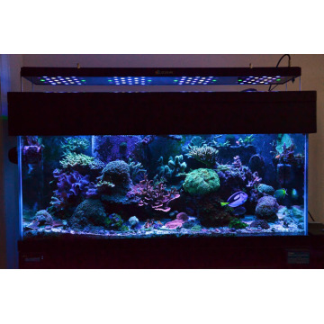 No Noise LED Aquarium Light voor Reef Coral