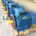 50HP Three Phase High Efficiency Electric Motor
