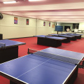 Best quality Table Tennis Flooring