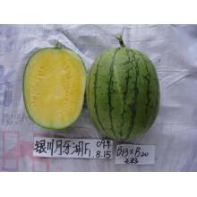 High quality factory for Watermelon Seeds Yellow flesh hybrid seedless watermelon seeds supply to Monaco Supplier