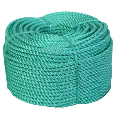 PP Danline Twist Rope