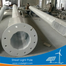 DELIGHT Solar Street Light Pole Price