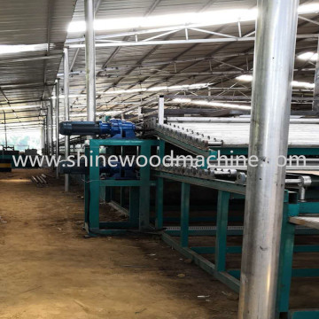 External Biomass Burner Veneer Dryer