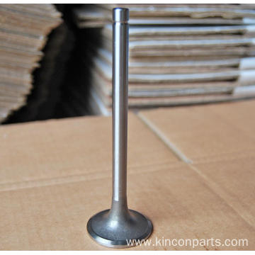 Engine Valves  LR4105