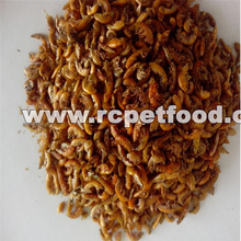 Microwave Dried Gammarus Gammarus for Reptiles