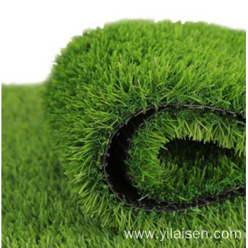 Professional  green grass landscaping for garden