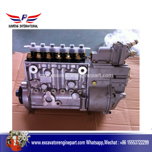 Hot New Products for Shangchai Engine Part Shangchai C6121 Engine Parts BH6P110 Fuel Pump P10Z002 export to Swaziland Factory