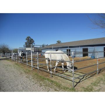 Cheap Useful High Tensity Flexible Rail Horse Fence