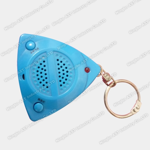 Recordable Keychain, Recording Key Chain