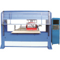 Vision Positioning Single Head Double Die Cutting Machine