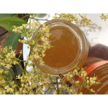 Healthy Original Pure Nature Bee Litchi Honey
