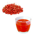 New Quality Goji Juice original goji drink