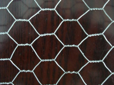 Hexagonal netting (12)