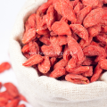 Goji Berry In Ningxia