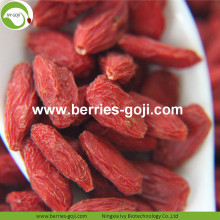 Wholesale Premium Nutrition Low Pesticide Goji Berries