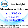 Shenzhen Global Ocean Freight Shipping Service to Belawan