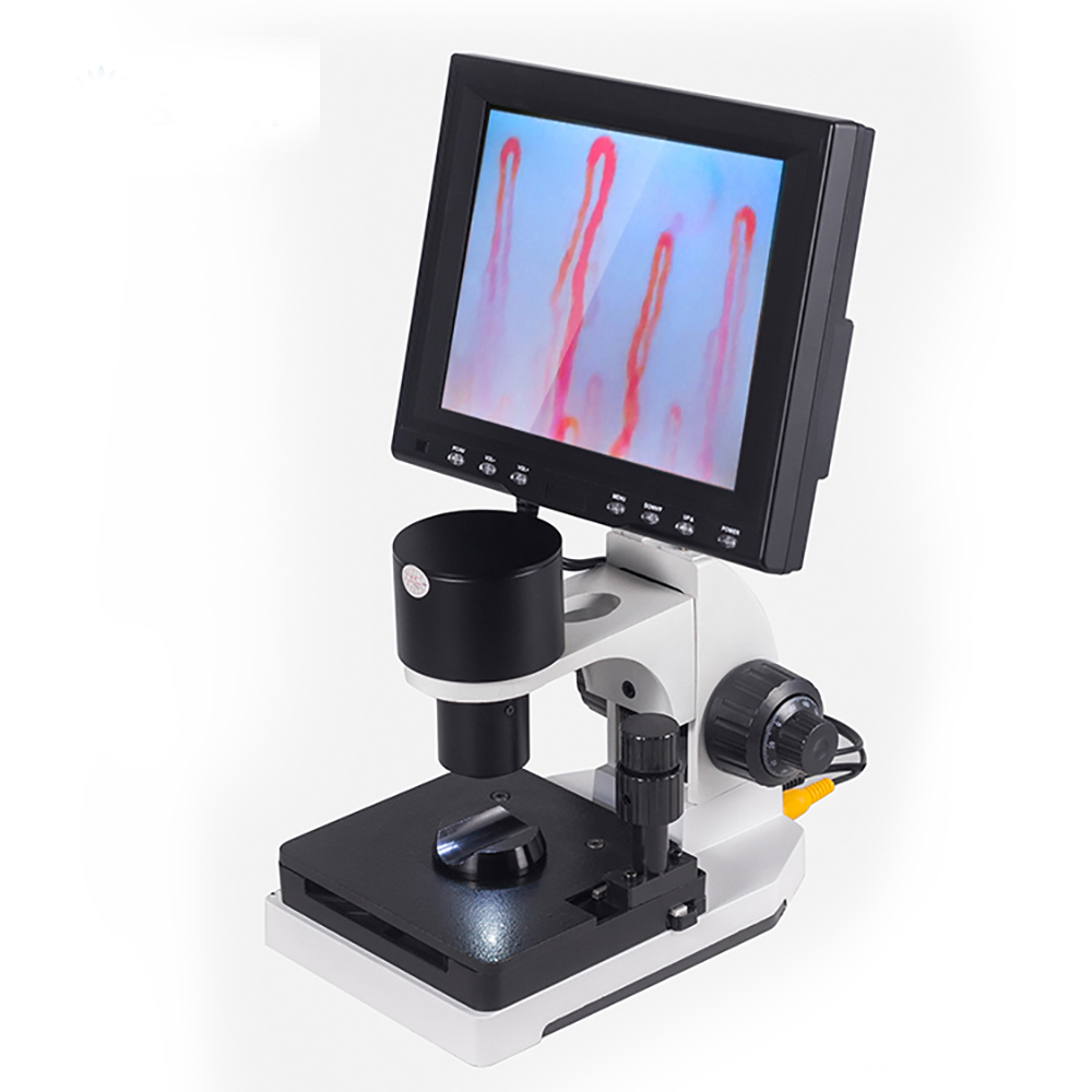 8 Inch Nailfold Micirculation Microscope Detector