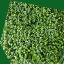 Artificial Peanut Grass wall