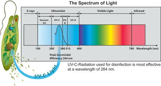 UV Disinfection Tube