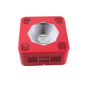 Shenzhen 192W COB LED Plant Grow Light