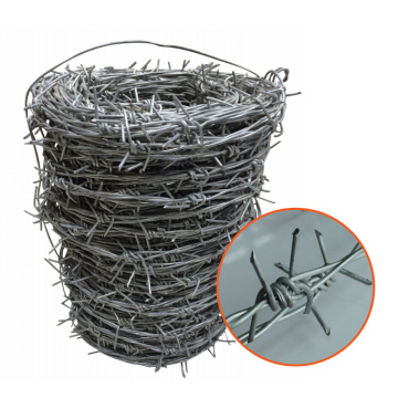 Barbed Wire Double Twisted